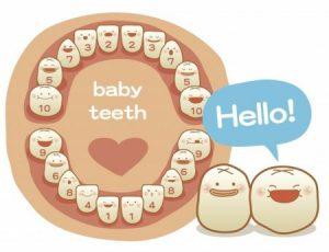 baby-teeth-2
